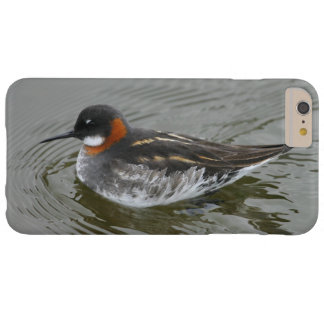 Red-Necked Phalarope iPhone Case by RoseWrites