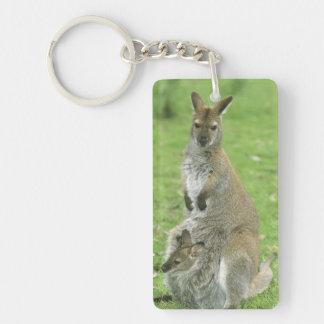 Red-necked Wallaby, Macropus rufogriseus), Double-Sided Rectangular Acrylic Keychain