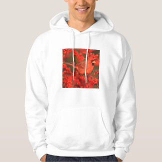 Red Northern Cardinal Male, IL Hoodie