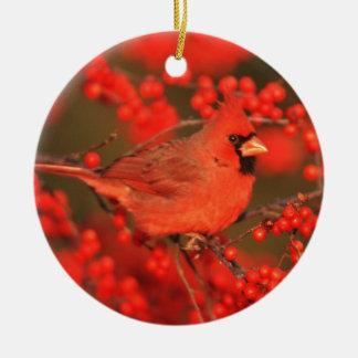Red Northern Cardinal Male, IL Round Ceramic Ornament