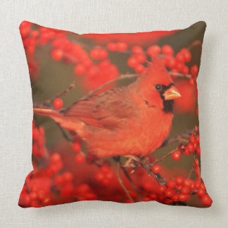Red Northern Cardinal Male, IL Throw Pillow