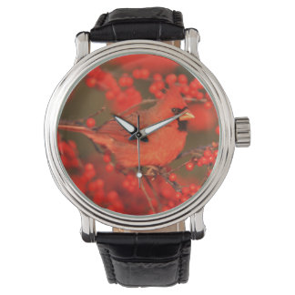 Red Northern Cardinal Male, IL Wrist Watches