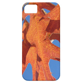 Red Oak Leaves Case For The iPhone 5