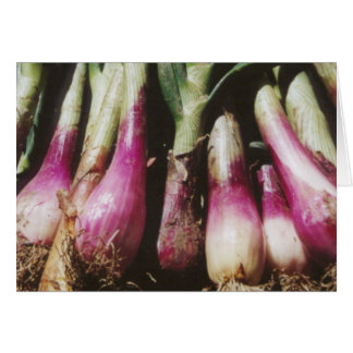 Red Onions at Farmers Vegetable Market Card