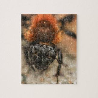 Red Orange Bee Puzzle