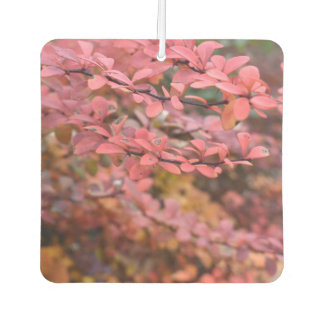 Red Orange Fall Foliage Autumn Leaves Nature Photo Car Air Freshener