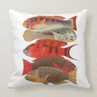 Red/Orange Parrot Fish, White Throw Pillow