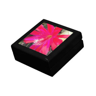 Red Orchid Cactus Bloom Floral Gift Box