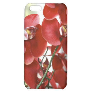 Red Orchid iPhone 5C Cover