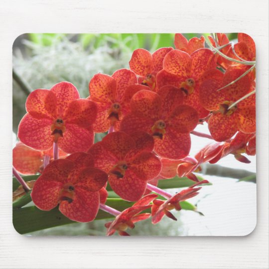 RED ORCHID MOUSE PAD