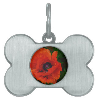Red Oriental Poppy Pet ID Tag