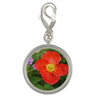 Red Oriental Poppy Photo Charm