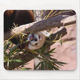 Red Panda2 Mouse Pad