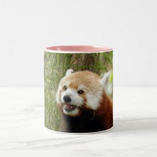 red-panda-033 Two-Tone coffee mug