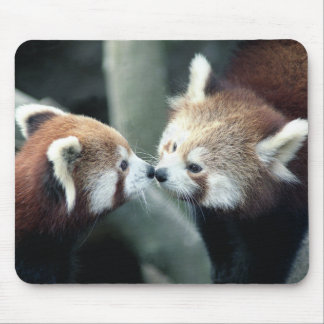 Red Panda #1-Mousepad Mouse Pad