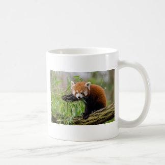 Red Panda Eating Green Leaf Coffee Mug