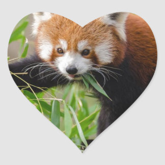 Red Panda Eating Green Leaf Heart Sticker