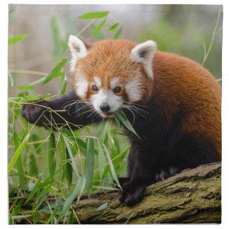 Red Panda Eating Green Leaf Napkin