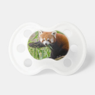Red Panda Eating Green Leaf Pacifier