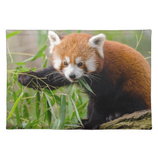 Red Panda Eating Green Leaf Placemat