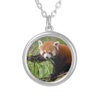Red Panda Eating Green Leaf Silver Plated Necklace