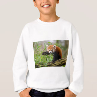 Red Panda Eating Green Leaf Sweatshirt