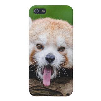 Red Panda iPhone 5/5S Case