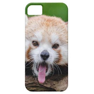 Red Panda iPhone 5 Cases