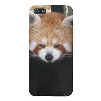 Red Panda iPhone 5 Cover