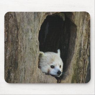 Red Panda Mouse Pad