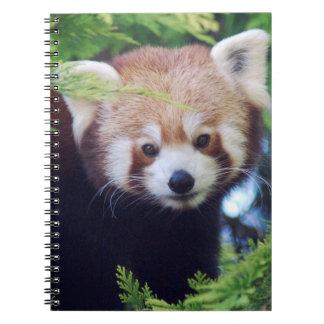Red Panda Notebooks