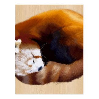 red panda postcard