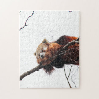 Red Panda Puzzle/Jigsaw Jigsaw Puzzle