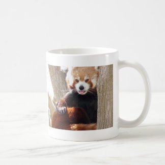 red panda sitting coffee mug