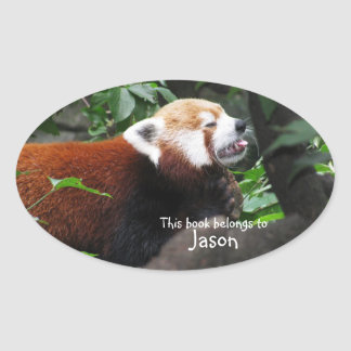 Red Panda sticking its tongue out Oval Sticker