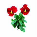 Red Pansy Duo Cut Out