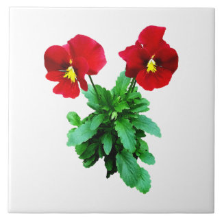 Red Pansy Duo Tile