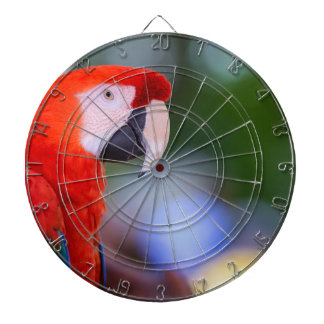 Red Parrot Photograph Dartboard