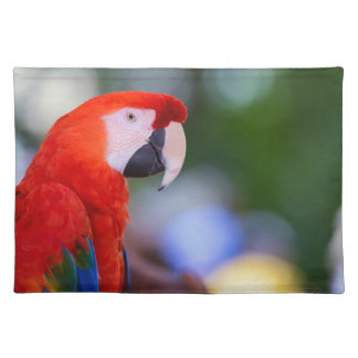 Red Parrot Photograph Placemat