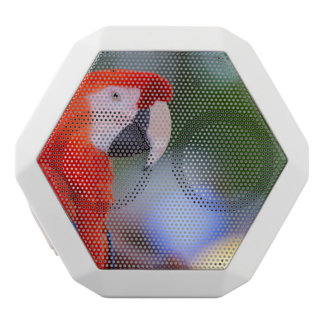 Red Parrot Photograph White Bluetooth Speaker