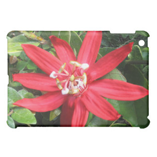 Red Passion Flower iPad Case