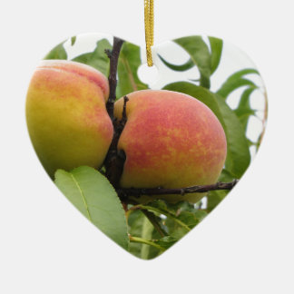 Red peaches hanging on the tree . Tuscany, Italy Ceramic Heart Ornament