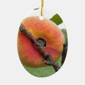 Red peaches hanging on the tree . Tuscany, Italy Ceramic Oval Ornament