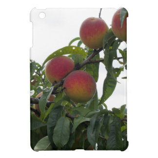 Red peaches on tree branches cover for the iPad mini