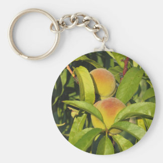 Red peaches on tree branches in a cultivated land basic round button keychain