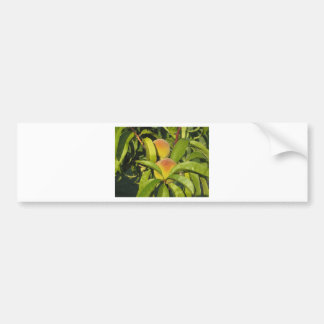 Red peaches on tree branches in a cultivated land bumper sticker