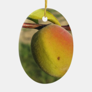 Red peaches on tree branches in a cultivated land ceramic oval ornament