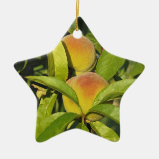 Red peaches on tree branches in a cultivated land ceramic star ornament