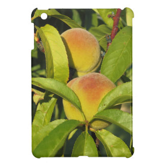 Red peaches on tree branches in a cultivated land iPad mini cover