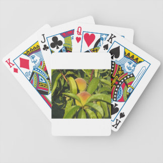 Red peaches on tree branches in a cultivated land poker deck